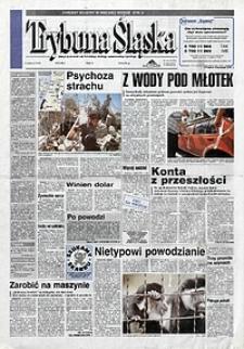 Trybuna Śląska, 1997, nr181