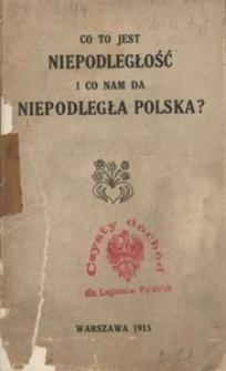 Co to jest niepodległość i co nam da niepodległa Polska?