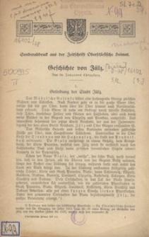Geschichte von Zülz